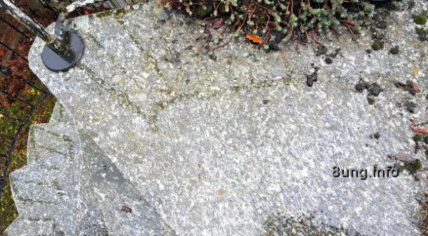 Wetterprognose Mai 2021 - Regen auf der Steintreppe