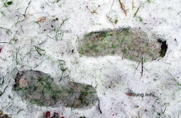 Wetter im Dazember - Spuren im Schnee