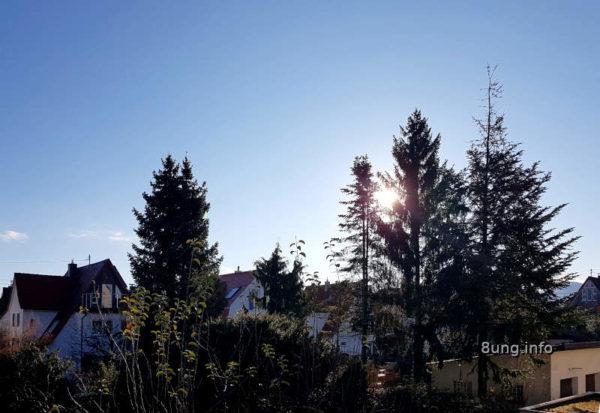 Wetter im Dezember auf der Ostseite - Sonne hinter der Tanne, blauer Himmel, kalt