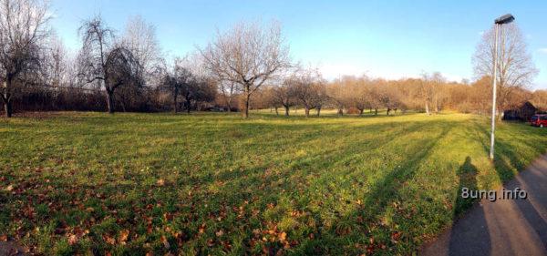 Wetter am November-Vollmond: Strahlender Sonnenschein und blauer Himmel