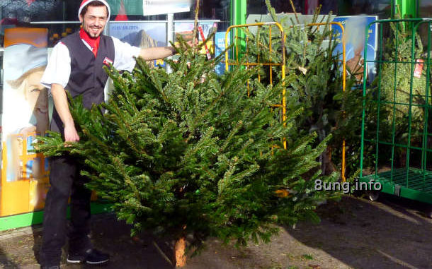 Weihnachtsbaum-Verkäufer bei strahlendem Sonnenschein