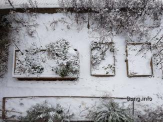 Blick vom oben auf den Garten im Winter