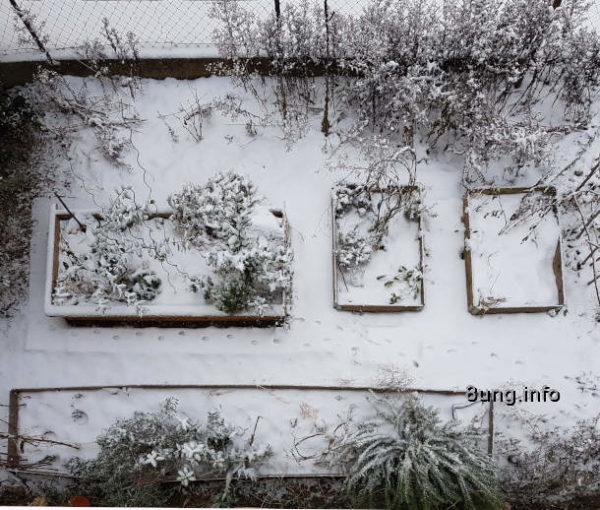 Mein Garten im Januar. Blick vom oben auf den Kräuter-Garten im Winter