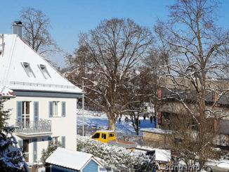 Blick aus dem Fenster auf einen Schulhof