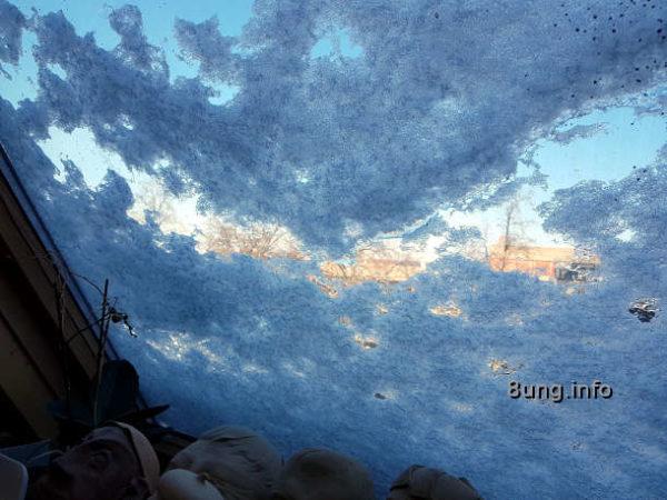 Blick aus meinem verschneiten Dachflächenfenster: Blauer Himmel