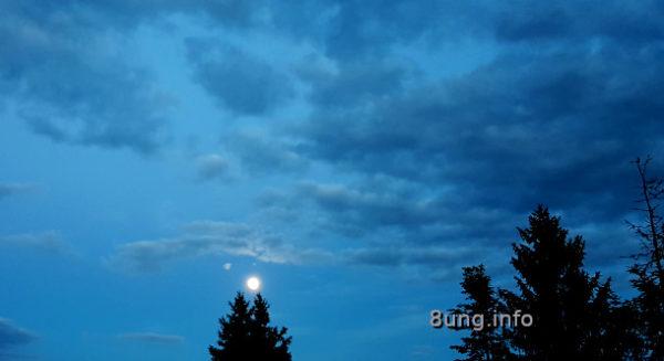 Mai-Vollmond über einer Fichte, Wolken am blauen Abendhimmel