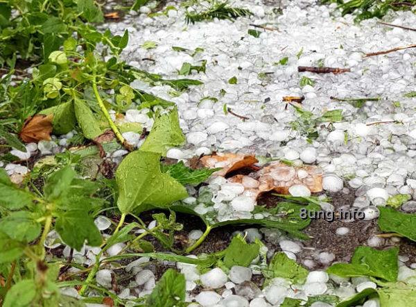Wetter im Juni: Hagelkörner mit abgerissenen Pflanzen