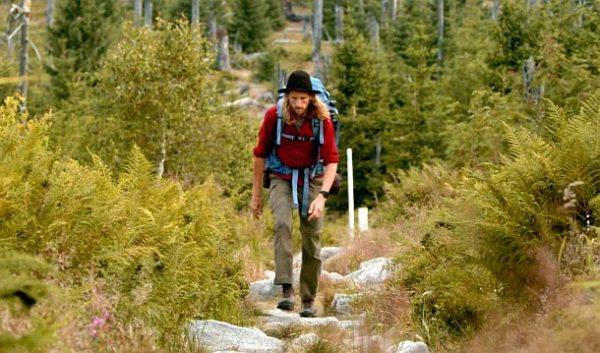 Der wilde Wald: Wanderer (c) Lisa Eder Film