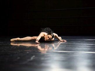 The Dying Swans Project - Bridget Breiner - Fotos: Jeanette Bak