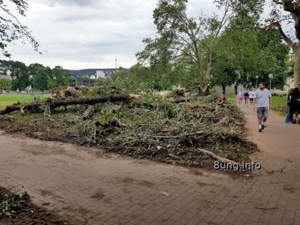 Schlosspark in Stuttgart 3 Tage nach dem Hagel