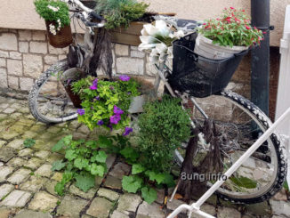 Blumenfahrrad