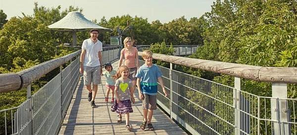 Besucher auf dem Baumkronenpfad