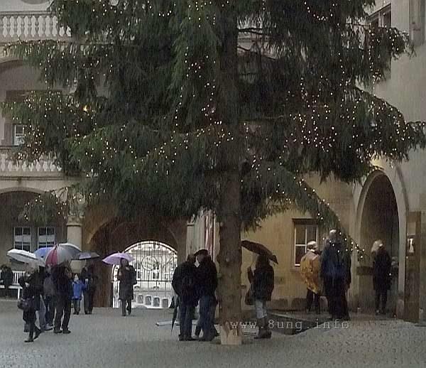 Regenwetter kurz vor Weihnachten, Weihnachtsbaum und Menschen mit Schirmen