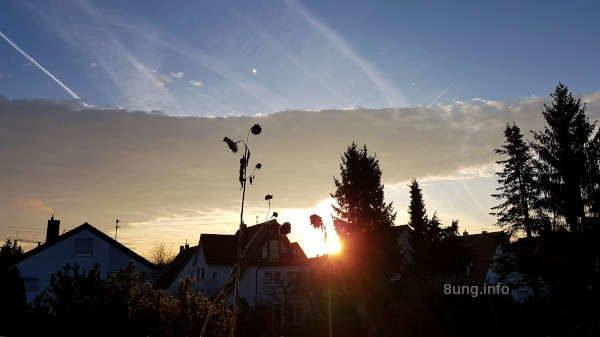 Aufgehende Sonne mit Wolkenband und blauem Himmel