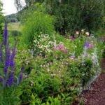 Blumenrabatte mit Hackschnitzelweg