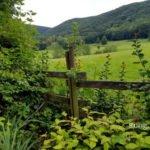 Blick über den Gartenzaun in die Landschaft