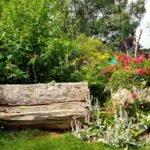 Sitzbank aus einem halbierten Baumstamm