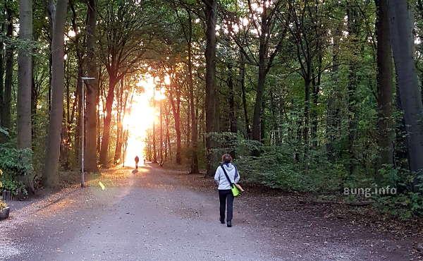 Spaziergänger in der Eilenriede