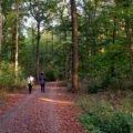Spaziergänger in der Eilenrieden, dem Hannoveraner Stadtwald
