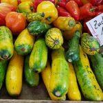 gelb-grüne Zucchine, rote Tomaten