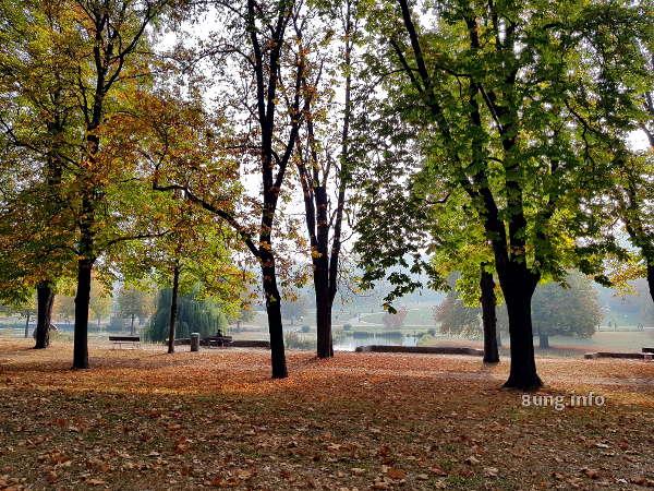 Herbst im Schlossgarten von Stuttgart