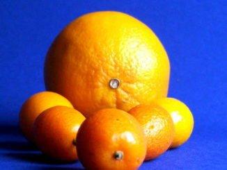 Orangen vor blauem Hintergrund