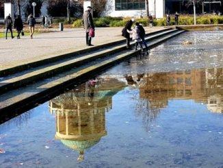 Spiegelung mit dem goldenen Hirschen im Eckensee